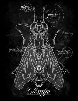 House of Flies Fine Art Print