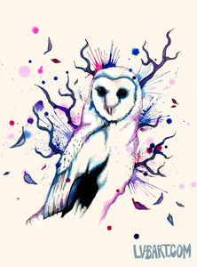 Cotton Candy Owl Fine Art Print