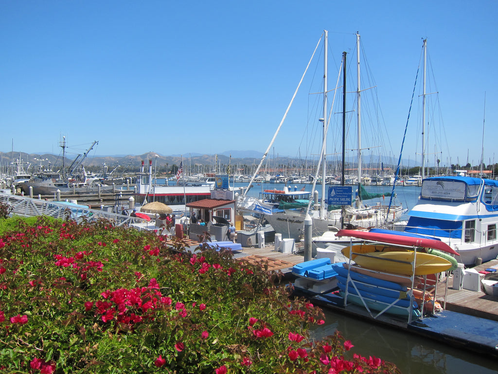Family Travel Destination Spotlight: Ventura, California