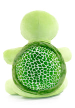 Personalised Teddy - Turtle - D'lighted
