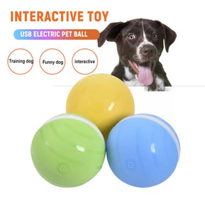 Fun Toy Motion Ball For Pets