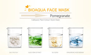 BIOAQUA Silk Protein & Hyaluronic Repairing and Moisturizing Mask (5 pieces)