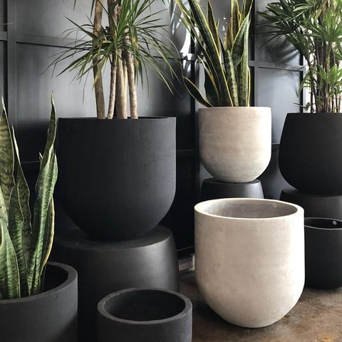 Arlo Pot - Black