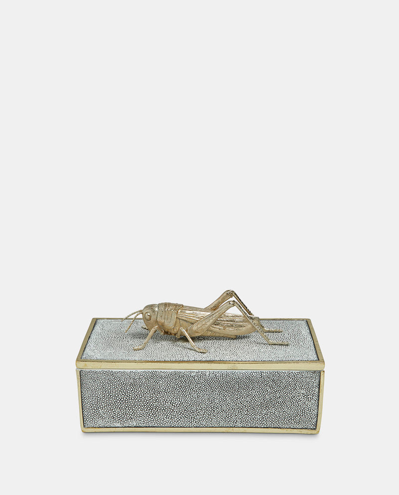 Decorative Cricket Box
