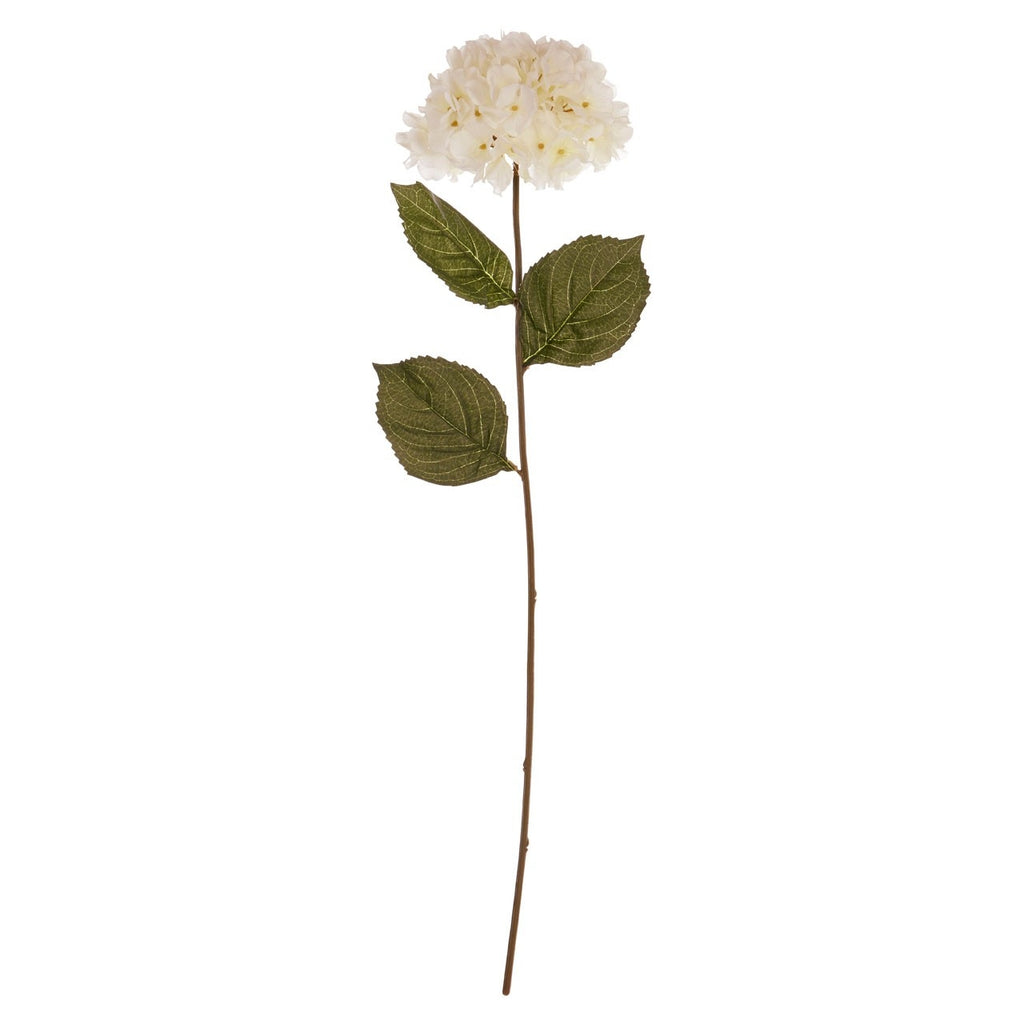 Hydrangea Single Stem