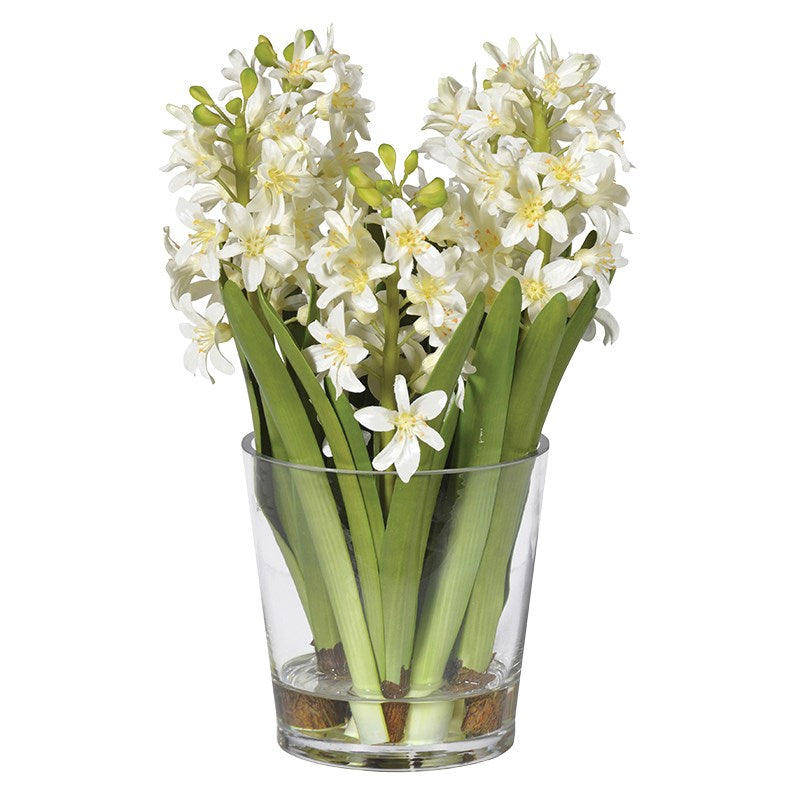 White Hyacinth Arrangement In Glass Shaped Vase
