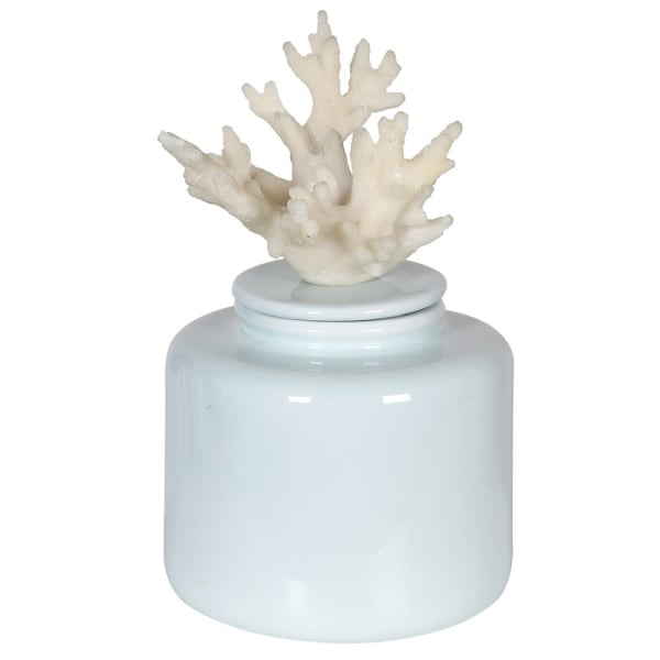 Light Blue Coral Jar