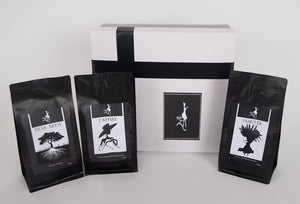 Madam Brew Coffee Sample Gift Box