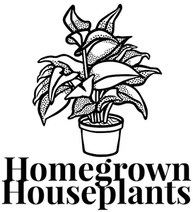 Homegrown Houseplants