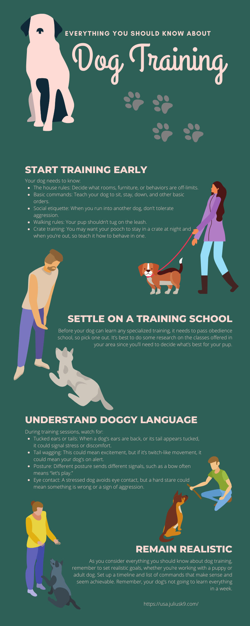 Everything You Should Know About Dog Training