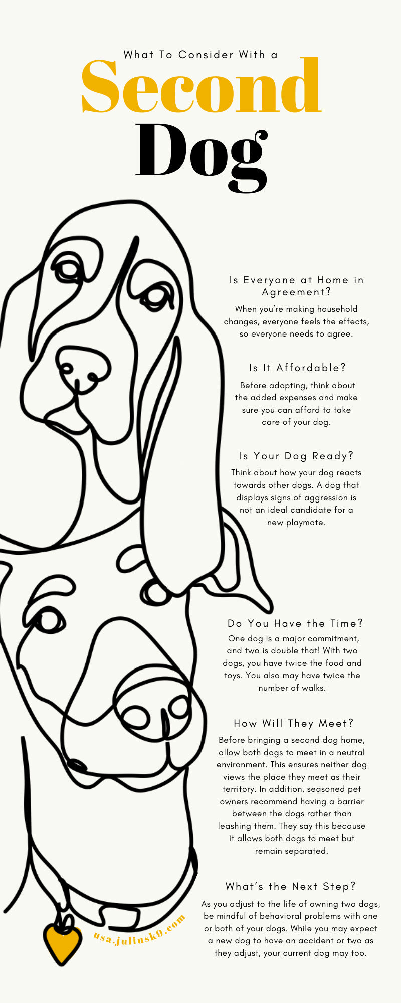 What To Consider With a Second Dog
