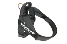 Load image into Gallery viewer, Julius-K9 IDC<sup>®</sup> Color & Gray<sup>®</sup>  Belt Harness