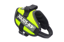 Load image into Gallery viewer, Julius-K9 IDC® Powerharness