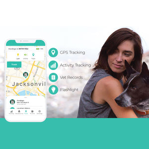 LINK PLUS Smart Dog GPS Location Tracker, Sport