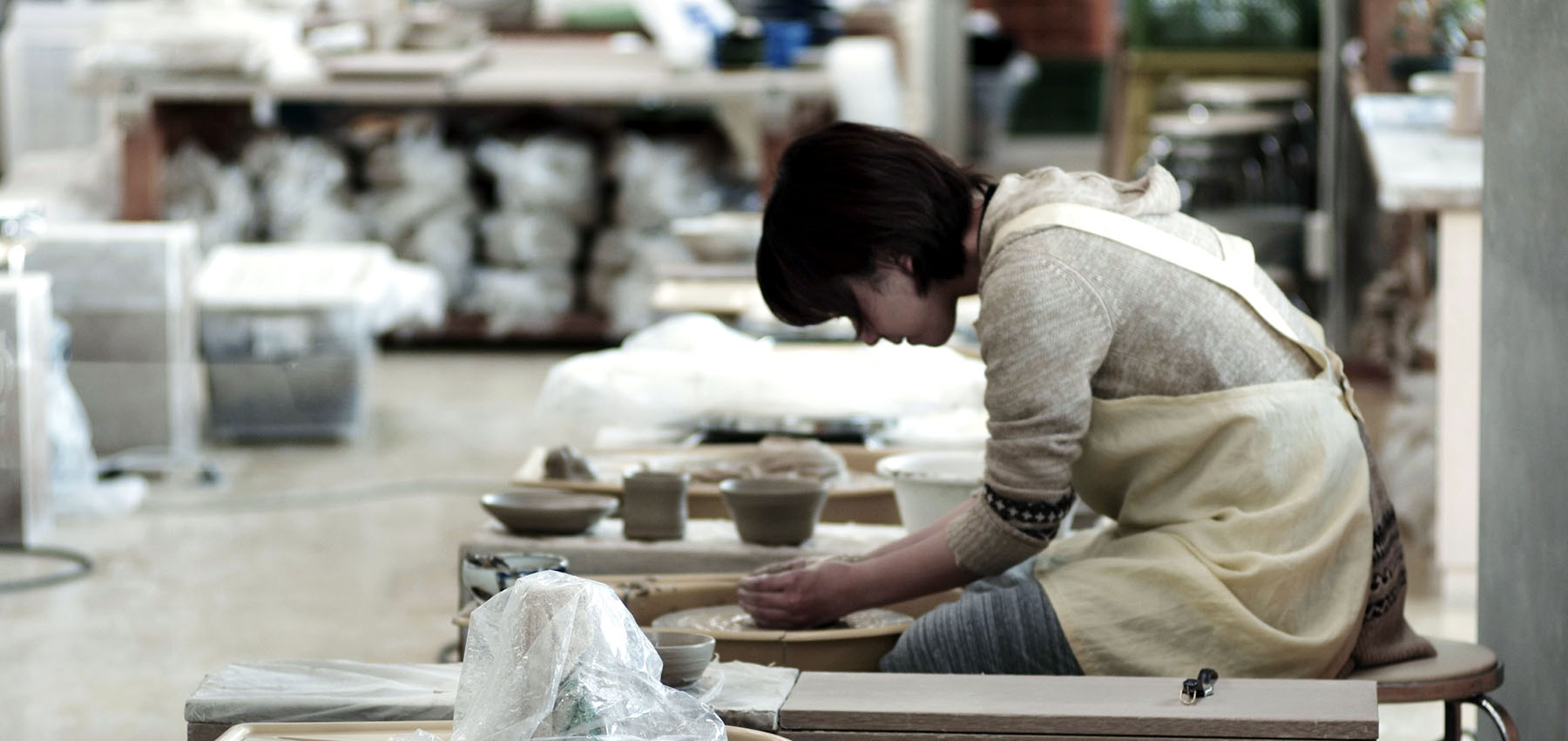Professional Japanese Potter