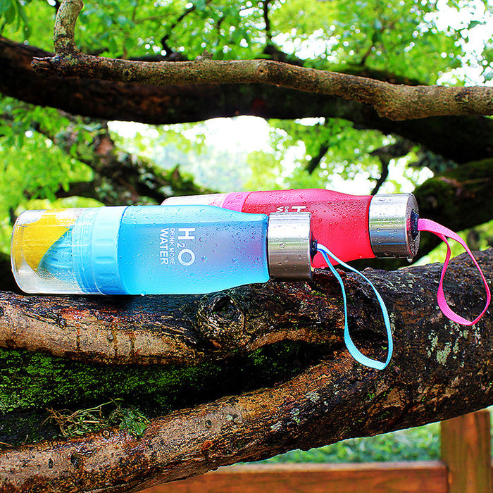 Fruit Infusion Water Bottle - Cool Trends