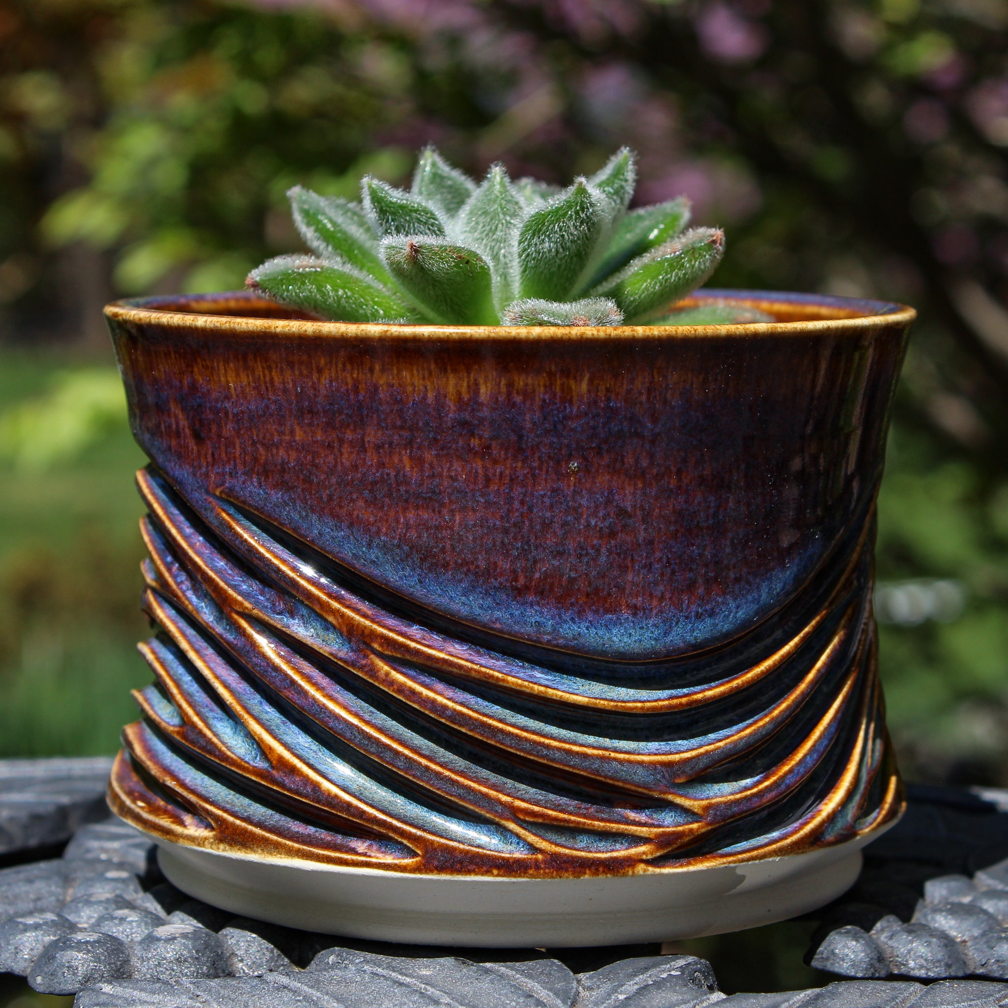 Phoenix Waves Planter 2