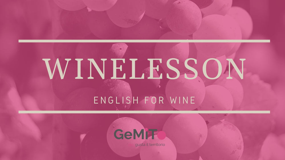 Wine in English: the winemaking process
