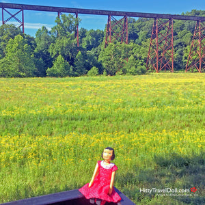 In Which I View the Tulip Trestle in Solsberry Indiana