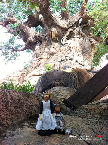 Hitty at the Tree of Life at Disney Animal Kingdom