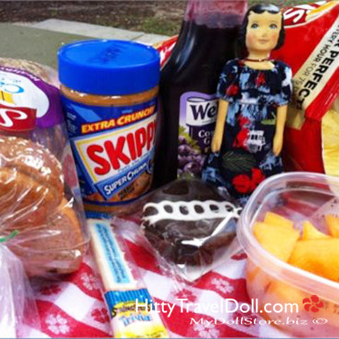 Hitty's Picnic Lunch