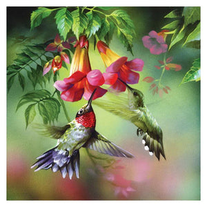 Hummingbird Full Flowers Diamond Painting Kit - DIY