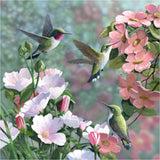 Hummingbirds Flowers Diamond Painting Kit - DIY