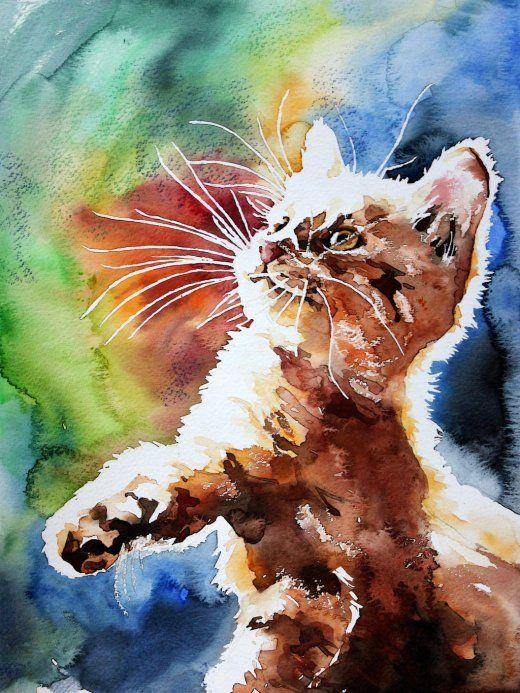 5d Cat Diamond Painting Kit Premium-8
