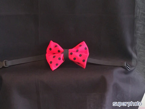 Polka Dot Pet  Bow Tie