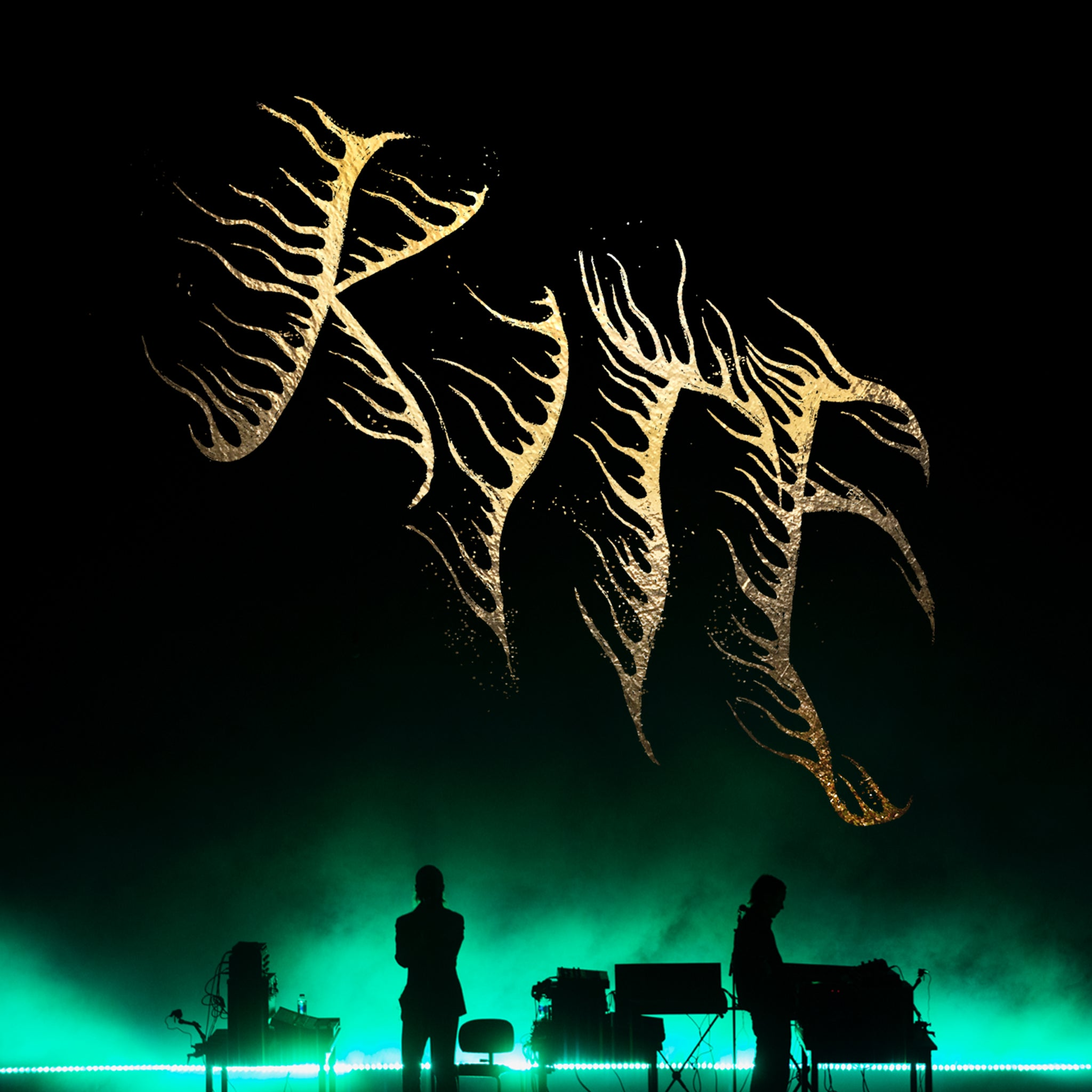 Kite at the Royal Opera (live) *SOLD OUT
