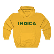Load image into Gallery viewer, 019 Unisex Indica Heavy Blend™ Hooded Sweatshirt