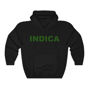 019 Unisex Indica Heavy Blend™ Hooded Sweatshirt