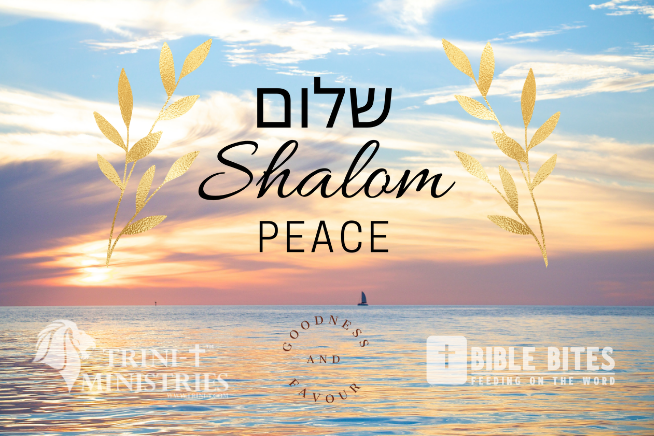 Bible Bites - Shalom - Numbers 6:23-26