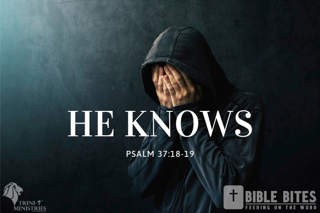 Bible Bites - The Lord Knows - Psalm 37:18-19
