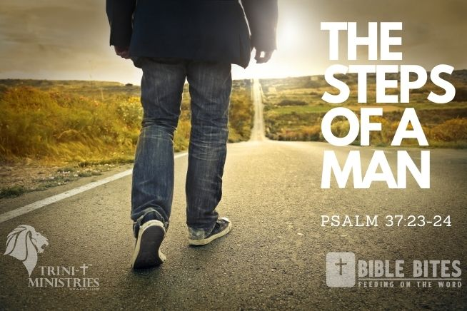 Trini-T Ministries - Bible Bites - Steps of a Man - Blog