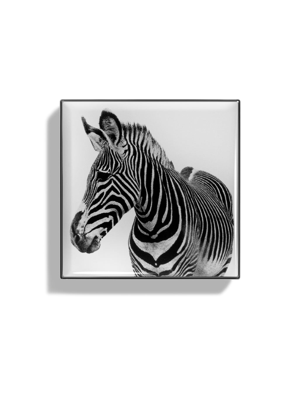 Zebra all hoverimage
