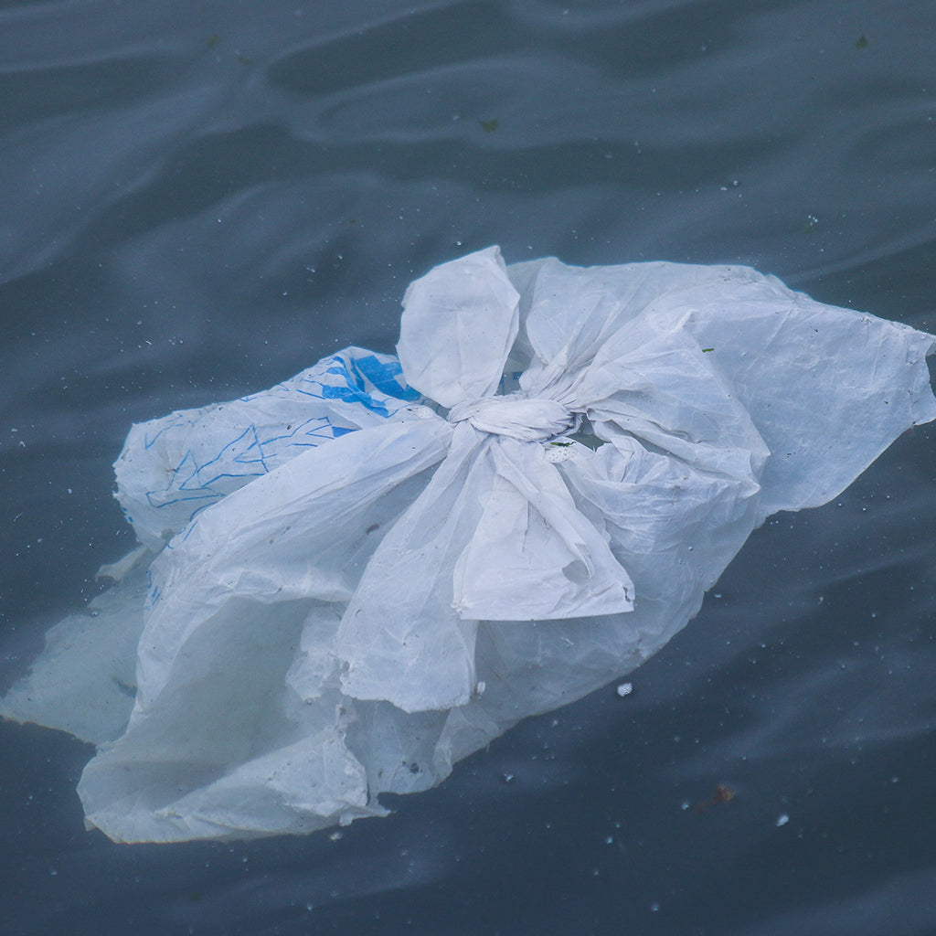 What Happened To The Plastic We Release Into The Ocean?