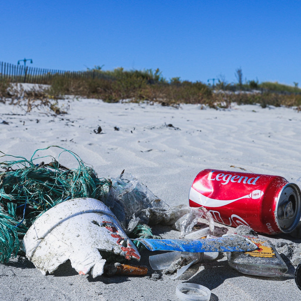 Where Does All The Marine Plastic Go?