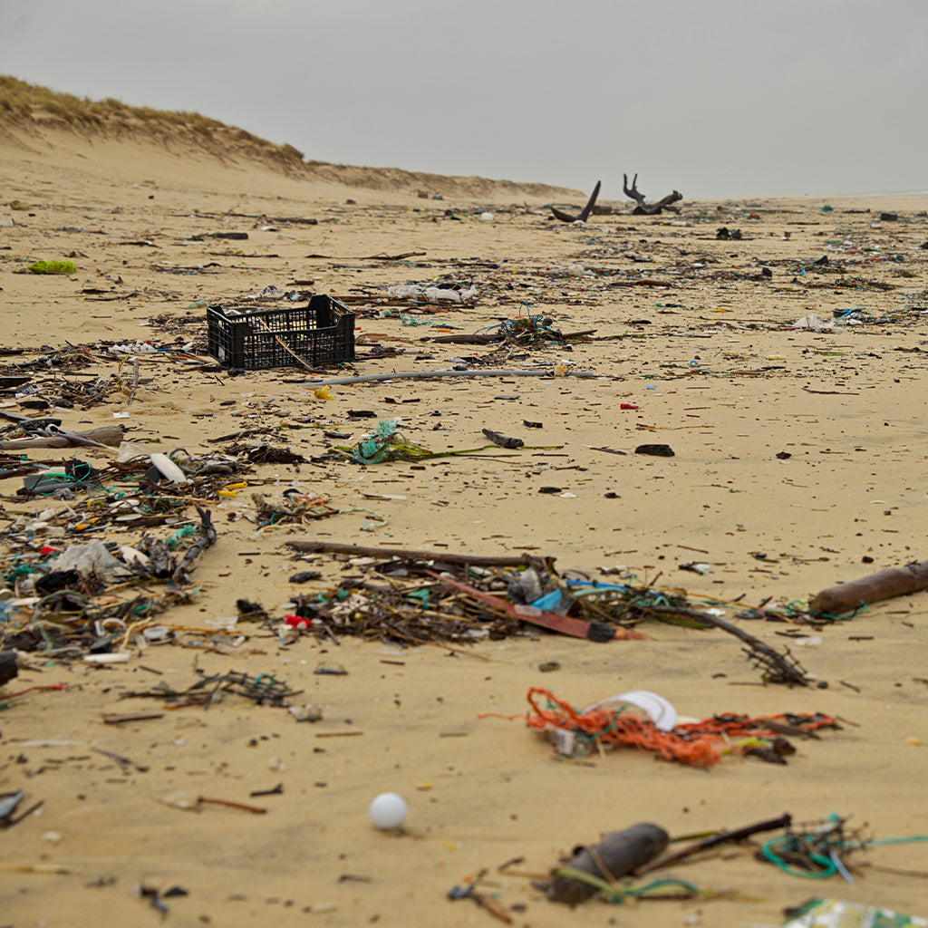 Study Finds Plastic Trash Contaminates Remote Hawaii Beaches