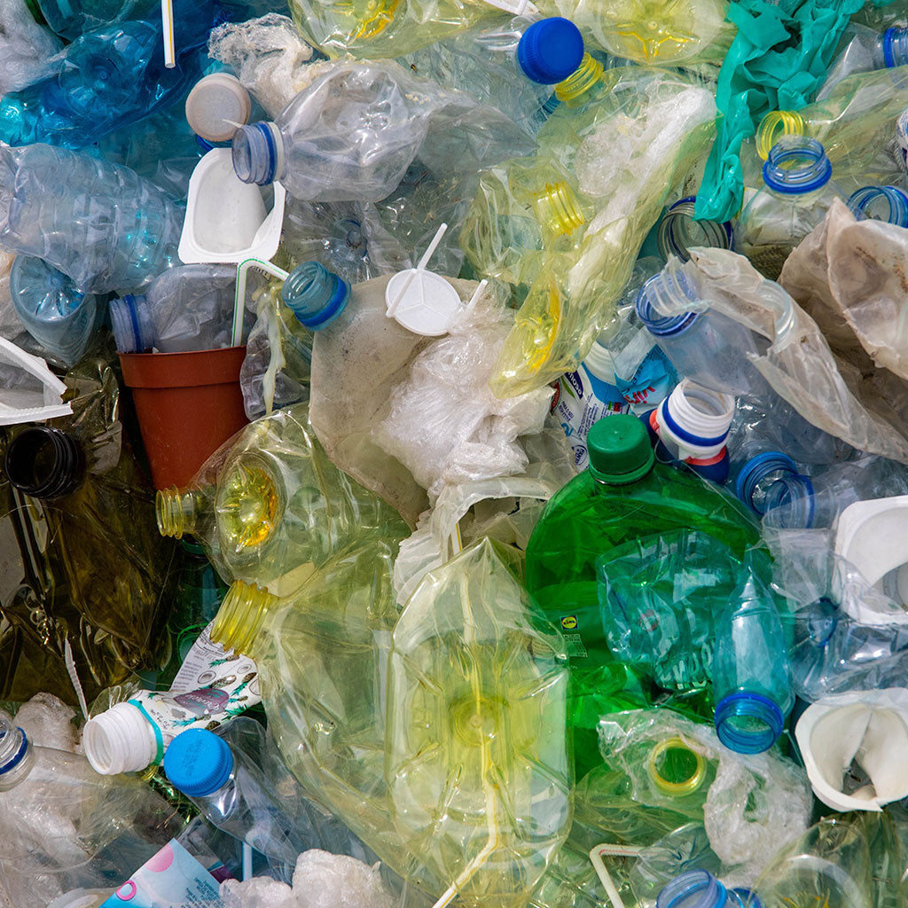 The Problem With Plastic in Nature and What You Can Do To Help