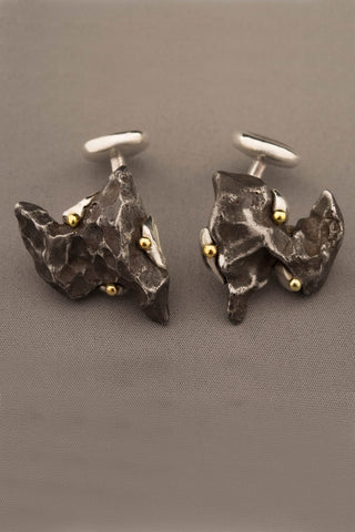 Dinosaur Bone and Sikhote-Alin Meteorite Cufflinks