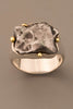 Sikhote-Alin Meteorite Ring in Sterling Silver and 18kt Gold