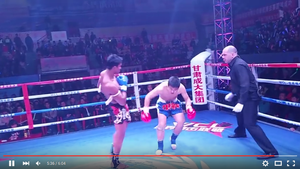 【FIGHT VIDEO】 Buakaw vs Miljonär