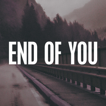 End of You - Merchandise