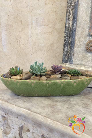 Imari Gardens Planter - Local Delivery Only
