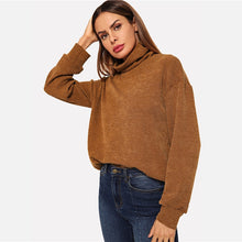 | Brown Pullover |