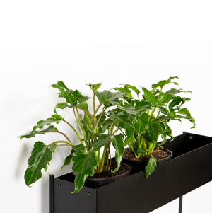Slim Steady Planter