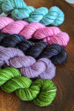 Mini Skein Set #17 - OOAK - Vibrant 80/20 - Fingering Weight - In Stock