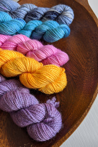 Mini Skein Set #20 - OOAK - Vibrant 80/20 - Fingering Weight - In Stock