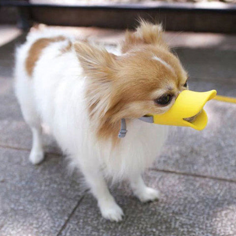 Cute Duck Muzzle For Pets